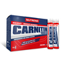 CARNITIN 1000 - 10 x 25 ml - (Enduro Drive)