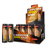 CARNITINE 3000 SHOT 20 x 60 ml