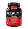 CREATINE X3 1130 g